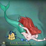 The Little Mermaid - [PornCartoon] - Flounder & Sebastian Fuck Ariel