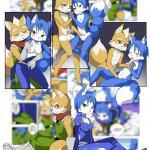 Star Fox - [Eudetenis] - Krystal and Fox